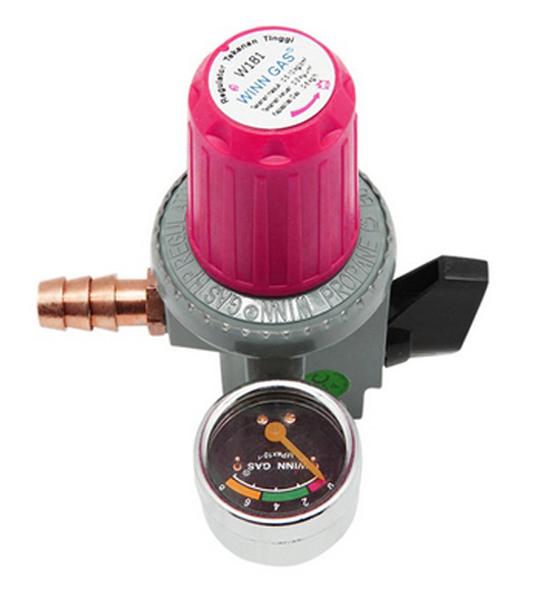 Winn Gas W181 Regulator Gas