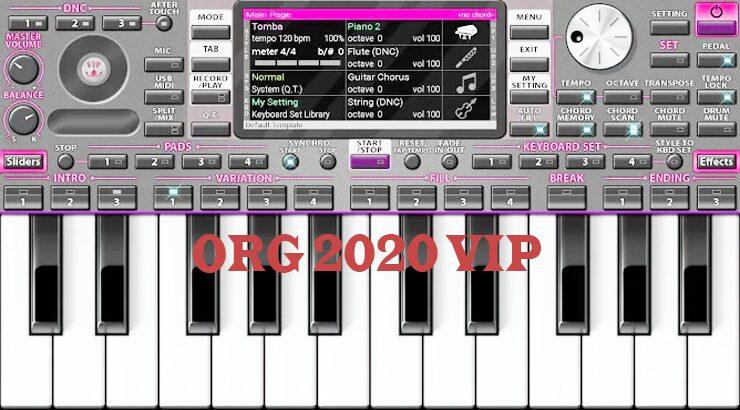 ORG 2020 vip