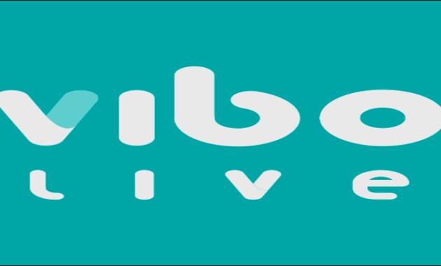 Vibo Live Mod Apk