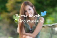 Twitter Bokeh China Museum