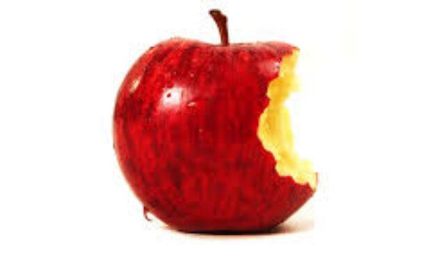 mimpi apel digigit